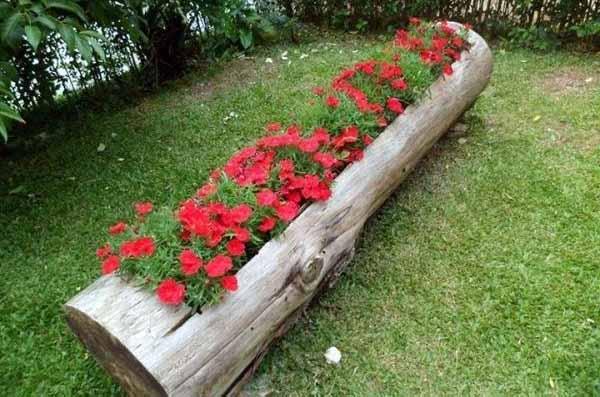 Бревно с проемом для посадки цветов