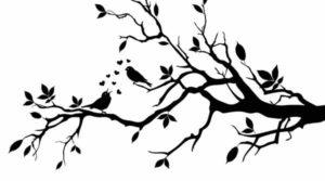 Ветка сакуры с птицами