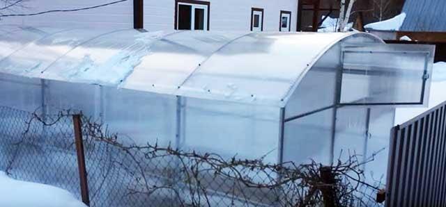 Тепличный комплекс на даче