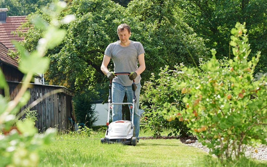 Как осуществлять уход за газонной травой осенью
