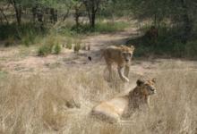 Интересные места Кении
